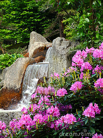 Free Waterfall. Stock Photo - 136610
