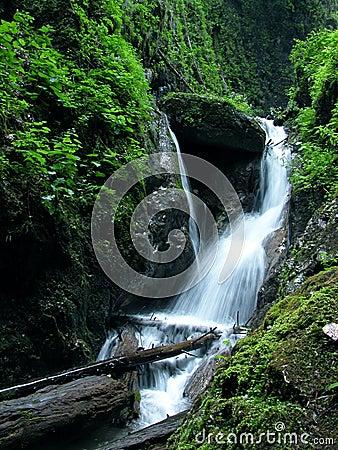 Free Waterfall Stock Photos - 201153