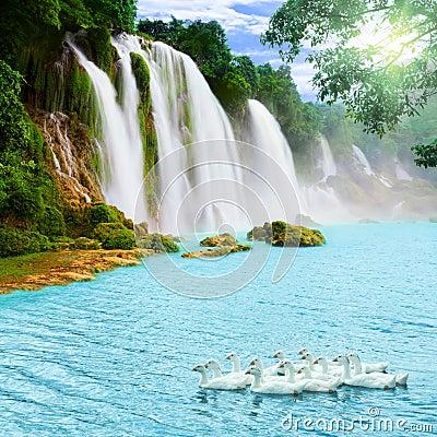 Free Waterfall Stock Photography - 20388922