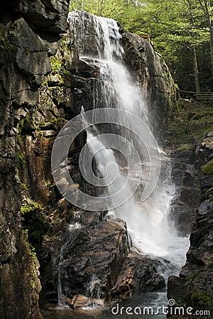 Free Waterfall Stock Photo - 6407480