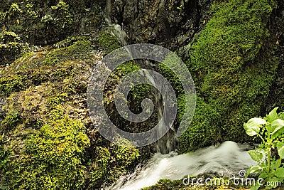 Waterfall and creek