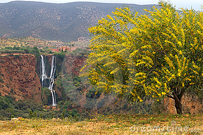 Waterfall d Ouzud, Morocco