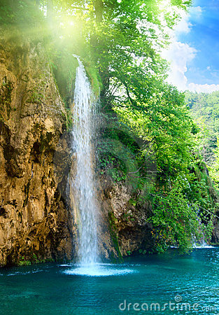Free Waterfall In Deep Forest Royalty Free Stock Images - 7723609