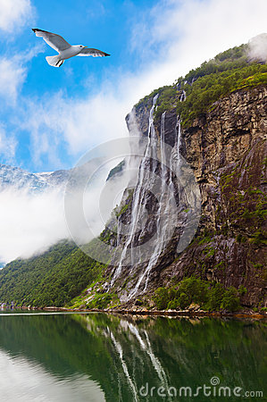 Free Waterfall In Geiranger Fjord Norway Stock Image - 33355411
