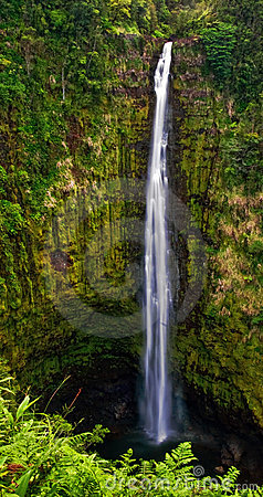 Free Waterfall In Jungle Of Hawaii Royalty Free Stock Image - 10076276