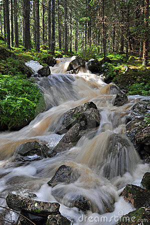 Free Waterfall In Swedish Nature Royalty Free Stock Photo - 10334345