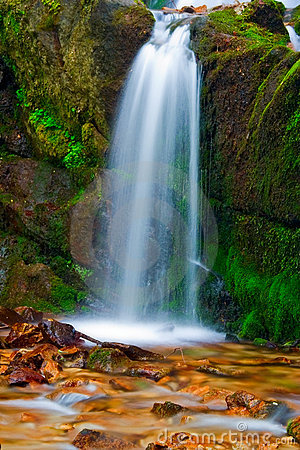 Free Waterfall In The Forest Stock Image - 1011451