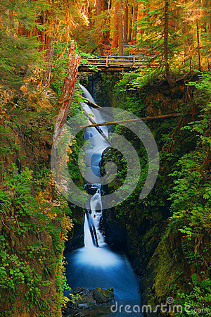 Free Waterfall In The Olympic National Park Royalty Free Stock Photos - 34909838