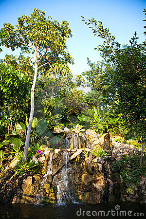 Waterfall In The Jungle Stock Images - Image: 13051224