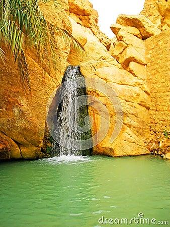 Waterfall in mountain oasis Chebika