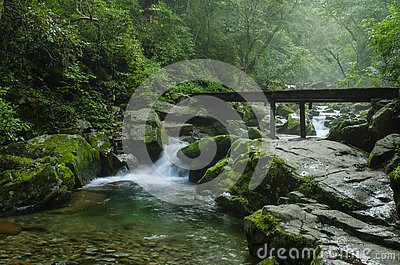 Waterfall at mountain river in summer forest at sunset. Light, mist. Stock Photo