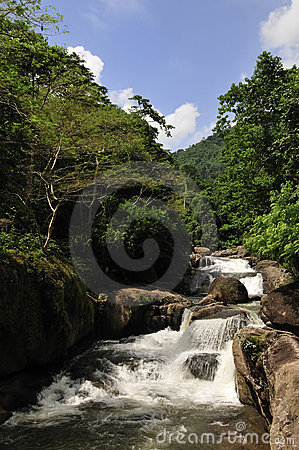 Waterfall in national park Khao Yai in Thailand