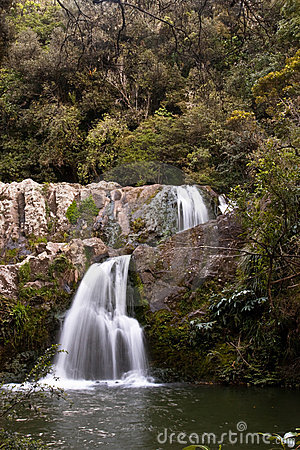 Waterfall in New Zealand bush