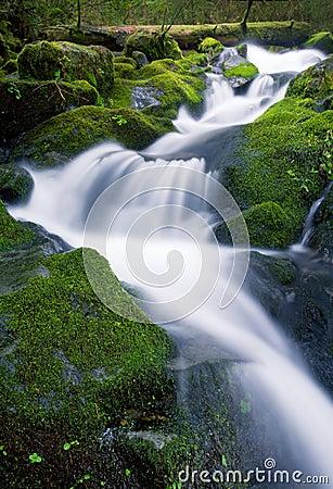 Waterfall, Olympic Ntl. Park