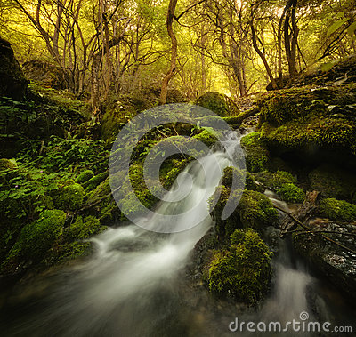 Free Waterfall On Mountain River With Moss On Rocks Royalty Free Stock Photos - 43767928