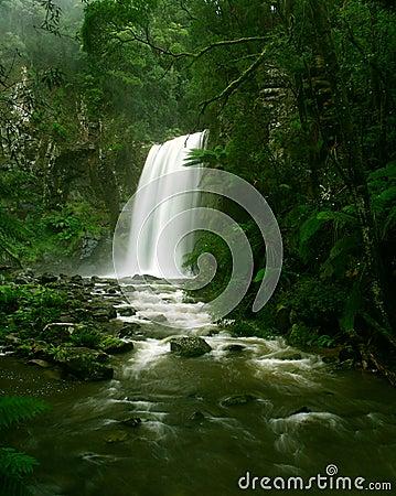 Waterfall in Rainforest, Victoria