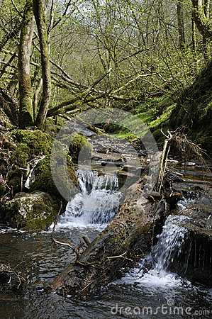 Waterfall on River Enig