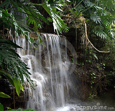 Waterfall  secluded beauty