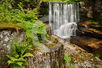 Waterfall and spring green vegetation