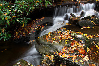 Waterfall and Stream in Autumn