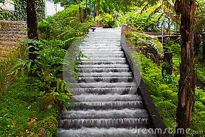 Waterfall in tropical garden in Madeira
