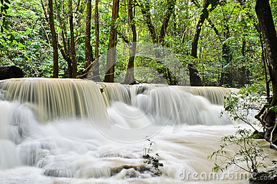 Waterfall of yellow stream
