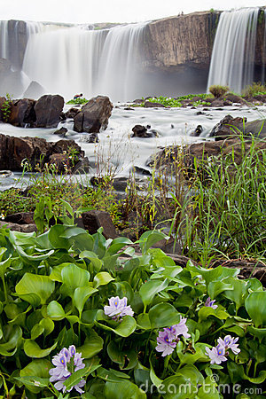 Free Waterfalls Stock Images - 15950974