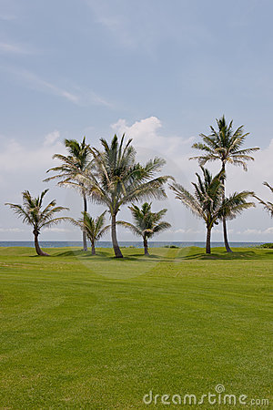 Waterfront golf course