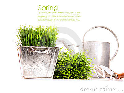 Watering can with grass and garden tools