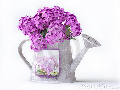 Watering-can with pink flowers