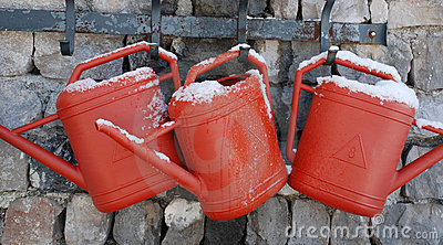 Watering Cans on Wall