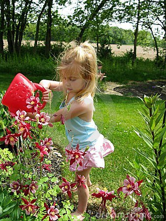 Free Watering Flowers Royalty Free Stock Photography - 5324407