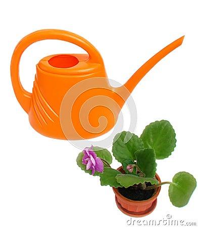 Watering-pot