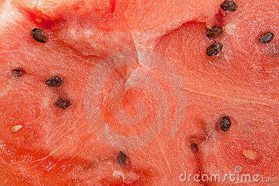 Watermelon with many seeds