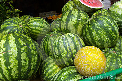 Watermelon and melon.