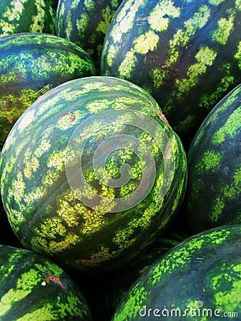 Watermelon (2)