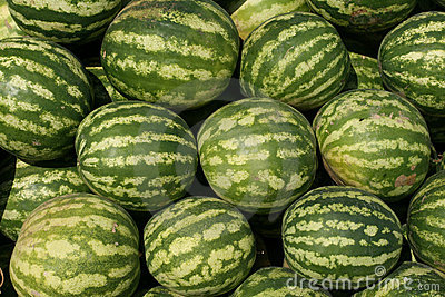 Watermelons in a marketplace