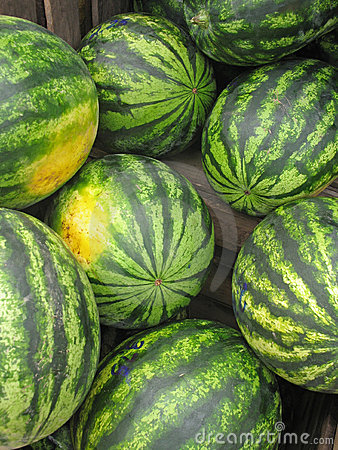 Watermelons for sale at farmers  market