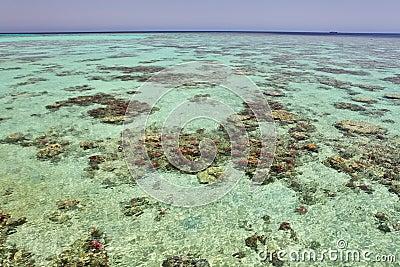 Waters of tropical reefs