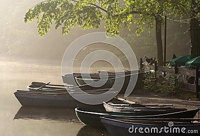 Waterside cafe - misty morning