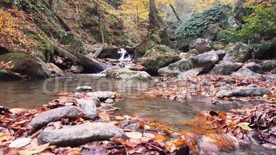 Waterval in het midden van een herfstbos stock video