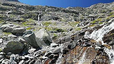 Watervallen die in idyllisch niet besmet milieu stromen die groene weiden en keien op de Alpen in de zomer kruisen stock video