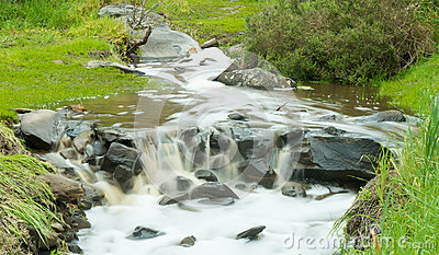 Watery stream surrounded by green grass