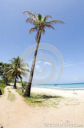 Waula Point Paraiso Beach Corn Island Nicaragua