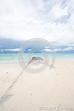 Wave Breaker at a tropical beach