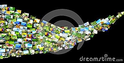 Wave of photos