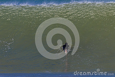 Wave Surfer Submerge Editorial Stock Image