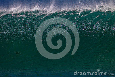 Wave Upright Details