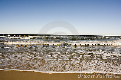 Waves along sandy beach