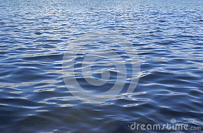 Waves in the lake water